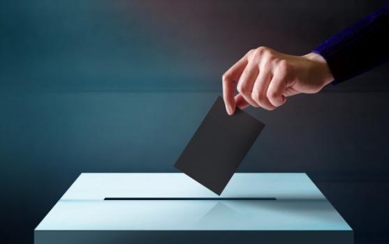 השפעת השפה על תוצאות הבחירות